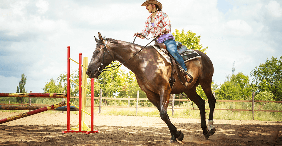 the cost of building an outdoor horse riding arena