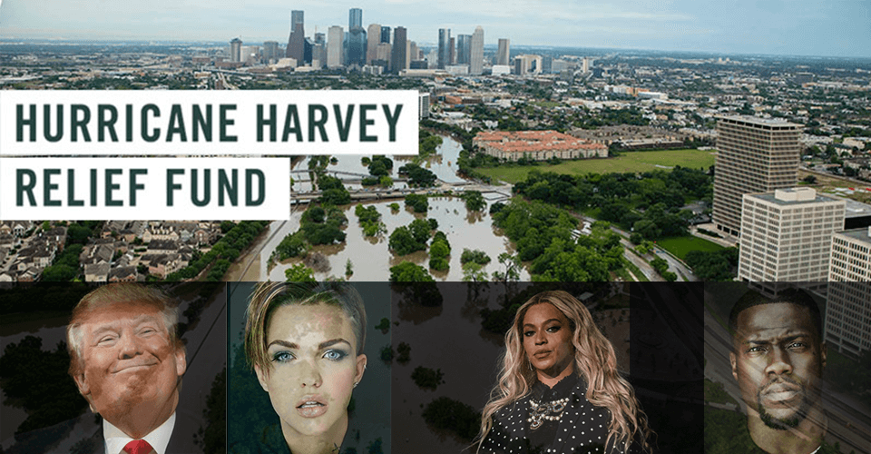 donated to Hurricane Harvey relief as % of net worth