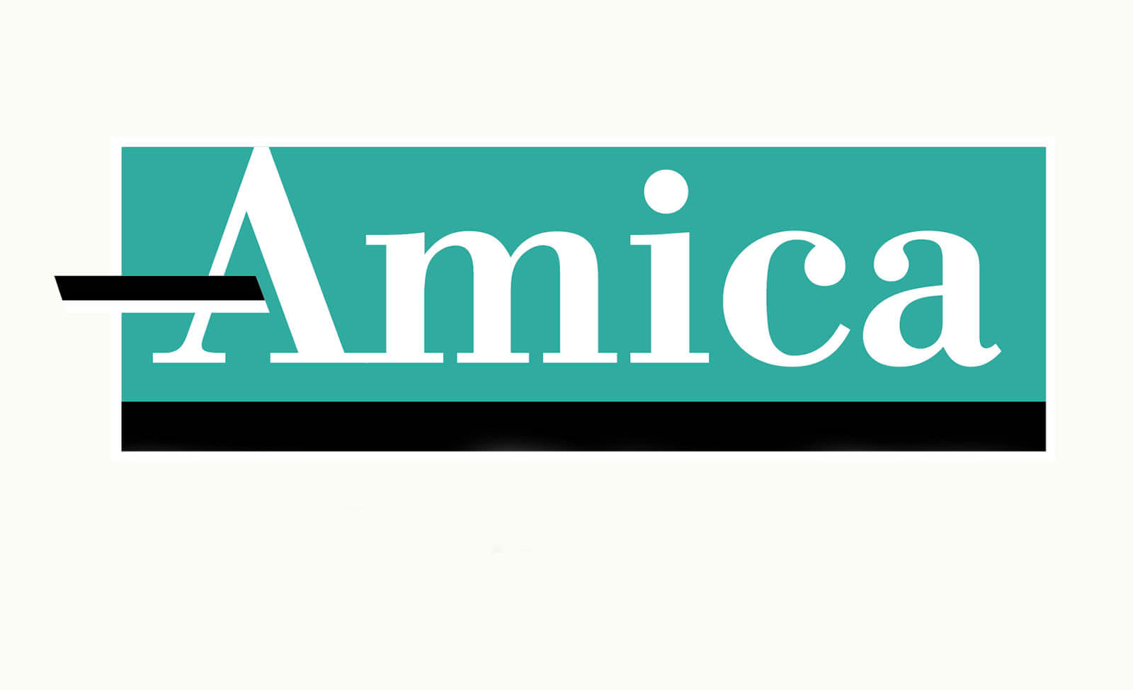 Amica auto insurance review